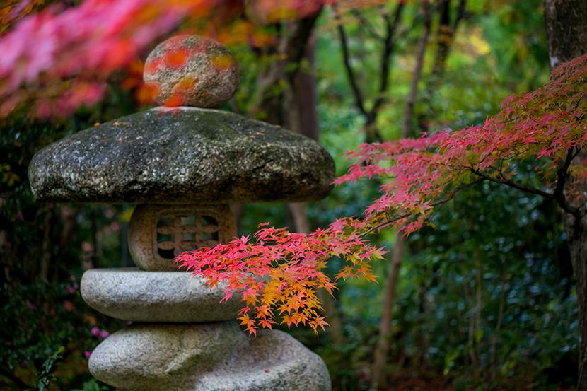 紅葉と石灯籠